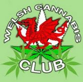 73_welsh.cannabis.club.jpeg